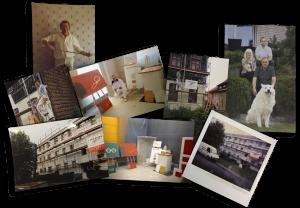 Collage von Malermeister Friedrichs aus Lagesbüttel, Braunschweig und Umgebung