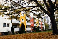 Referenzen Fassadenanstrich von Malermeister Friedrichs aus Lagesbüttel, Braunschweig und Umgebung